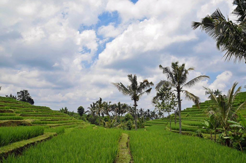 Indonezja- kraj tysiąca wysp coraz częściej wybierany przez turystów